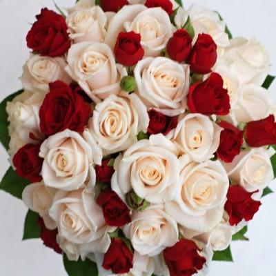 červené růže na zámku
